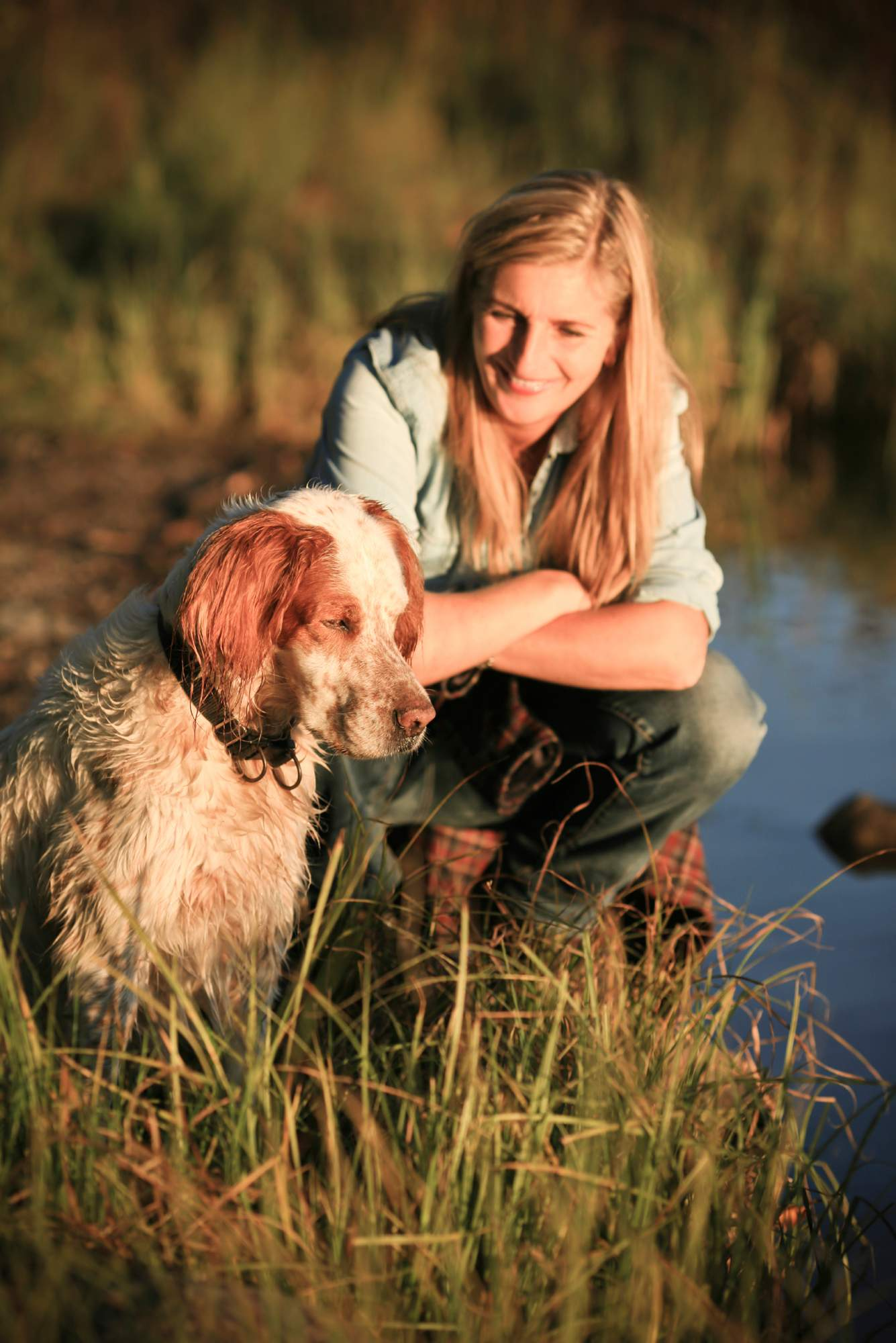 Animal First Aid Kit - Kurgo - First Aid Guide