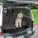 Dog Cargo Liner - Kurgo Cargo Cape in Charcoal