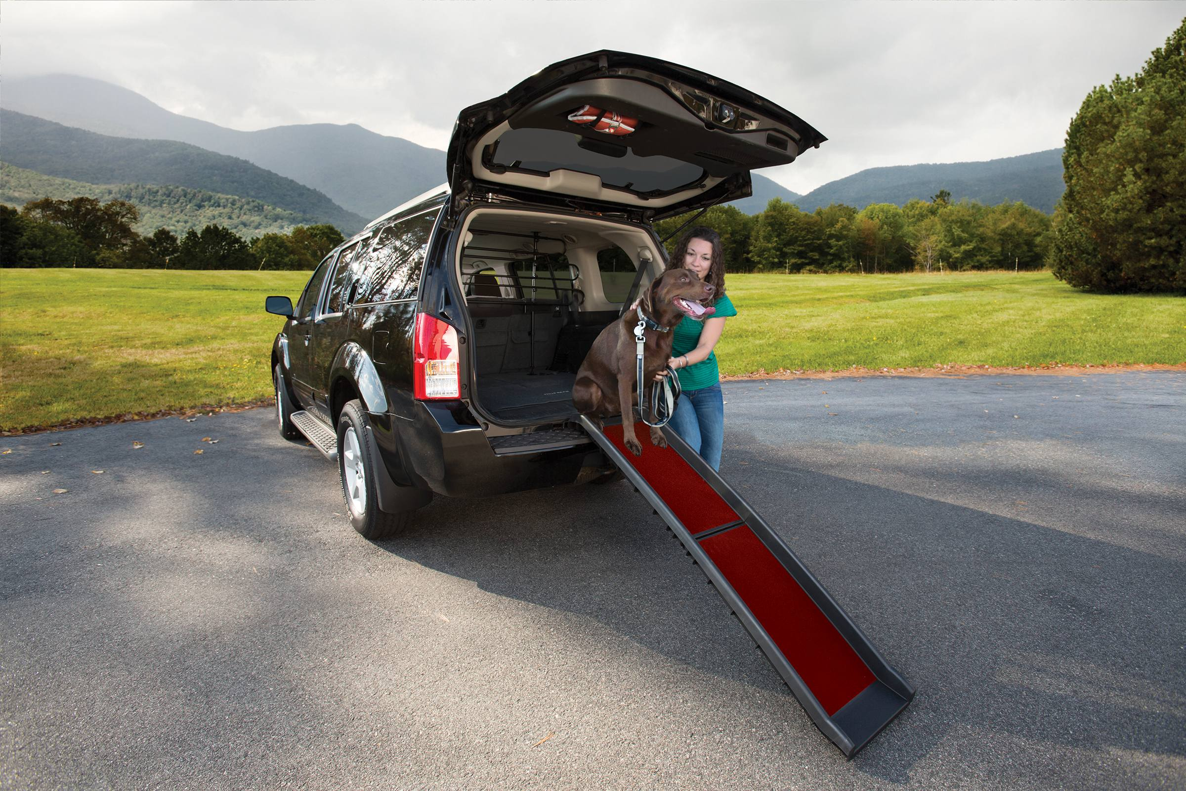 Dog Ramp - Kurgo Wander Ramp Makes Getting Into Car Easy For Older Or Disabled Dog