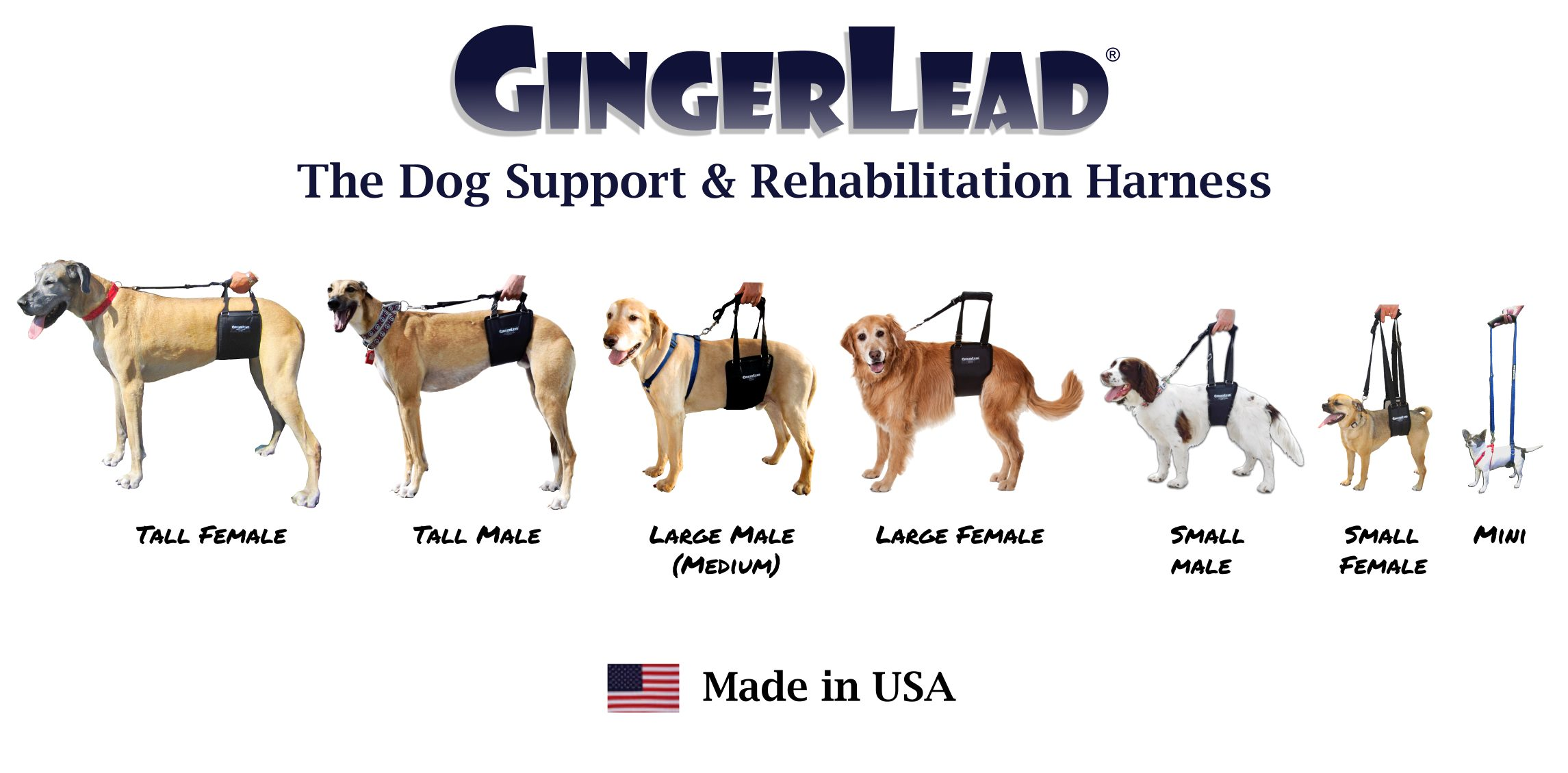 GingerLead Dog Sling