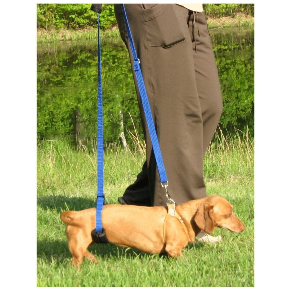 GingerLead Dog Sling, Mini Size