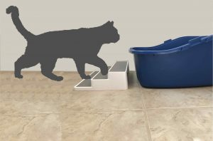 Solutions for cats peeing outside box - litter box steps to aid access