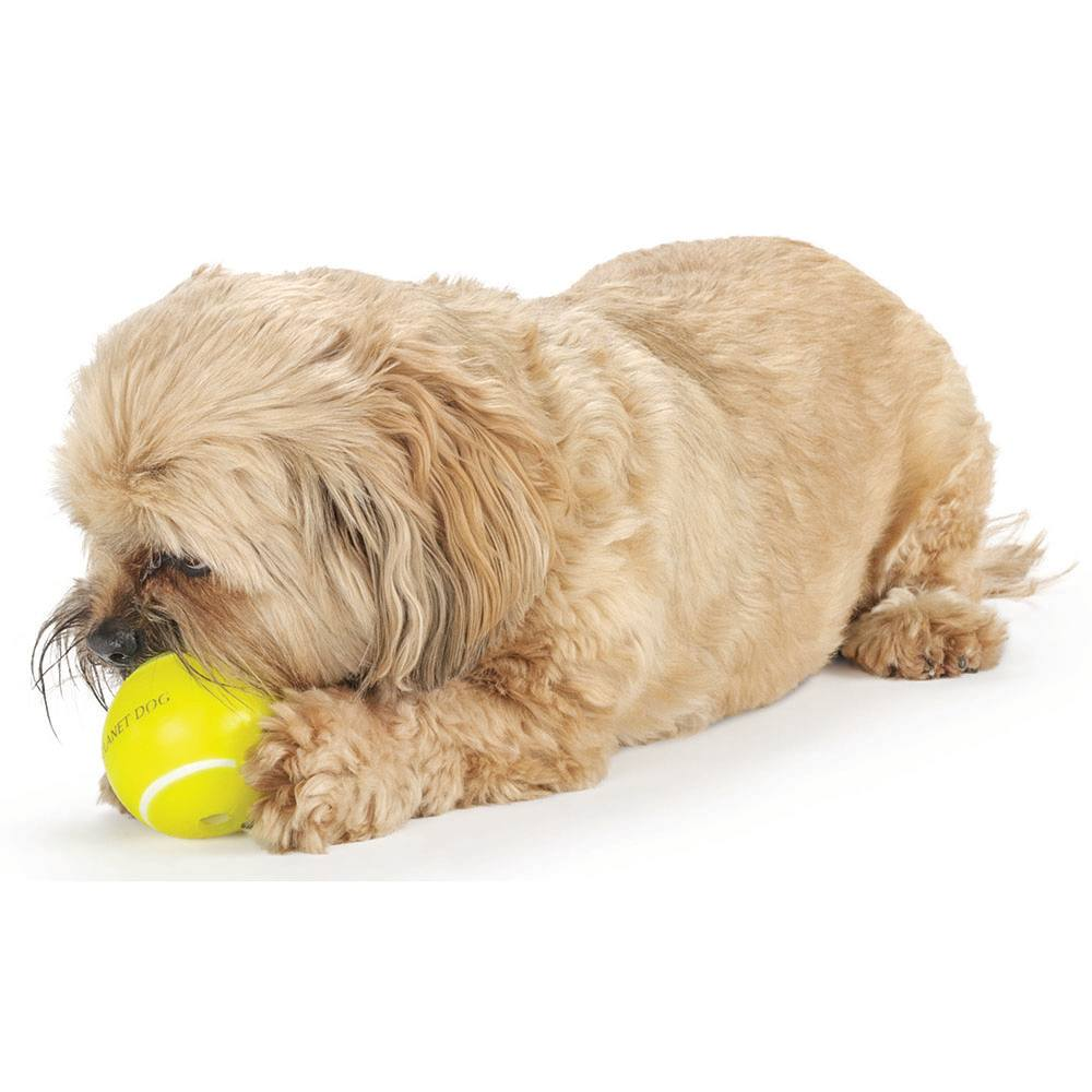 Dog playing with Planet Dog Tennis Ball Dog Toy