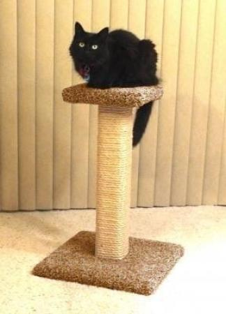 Straight Scratching Post with Platform - Dark Speckle Main