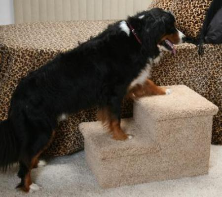 Pet Stairs - Big Double Pet Step - Natural